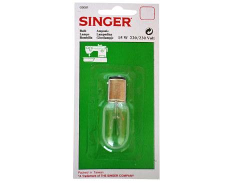 singer3051